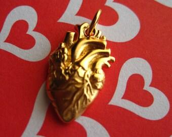 Anatomical Golden Heart Pendant Charm