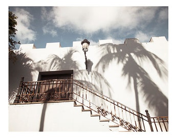 Art, Photography, Print, Caribbean, Sunlight, Shadows, Palms, 4x6 and Larger print