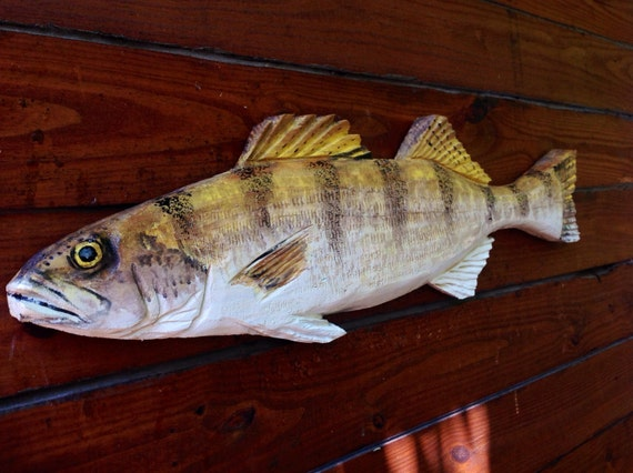 Walleye sculpture home decor freshwater wooden by
