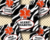 INSTANT DOWNLOAD Zebra Medical Alerts (218) 4x6 Digital Collage Sheet 1 inch square images for glass tiles resin pendants magnets