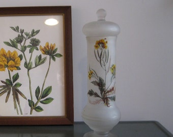 Botanical Apothecary Jar / Frosted Glass Candy Jar / Bath Salts / Vintage Wildflowers