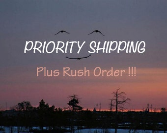 Head of the Line PLUS Priority Shipping, Up to 6 Items, 1-3 day Delivery, Not Guaranteed, Faster than First Class! Domestic Only