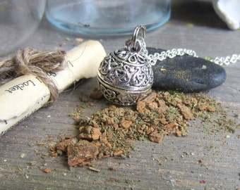 money spell necklace wiccan jewelry amulet prayer box necklace locket secret compartment pagan wicca metaphysics prosperity medieval herbs
