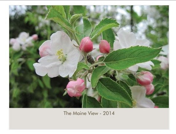 Wall Calendar 2014, Fine Art Photography,The Maine View, Celebrate Beauty Each Month of the Year, FREE SHIPPING in USA