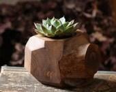Succulent Planter - Wood Plant Holder - Reclaimed Faceted Planter