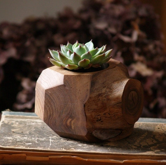 Succulent Planter Wood Plant Holder Reclaimed Faceted