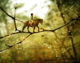 Fairy art, fantasy photo, whimsical wall decor, horse rider, girl's room decor, surreal picture, spider web
