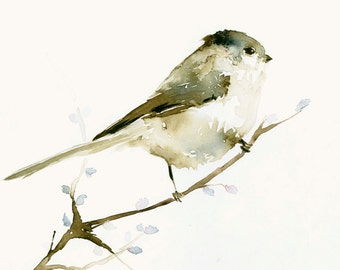 Watercolor Birds Art Print Tiny Long Tailed Bird