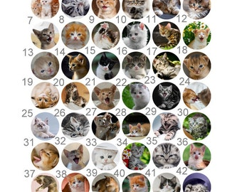 Cat Kitten Pinback Flatback Button Badge Party Favors Magnets 1 inch set of 10