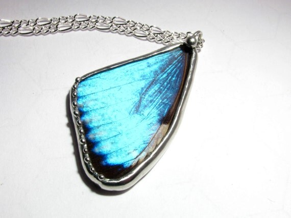 Blue Butterfly Jewelry: Real Blue Morpho Portis Butterfly Wing Necklace By