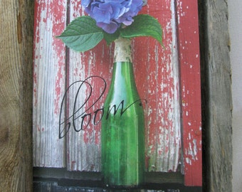 Hydrangea Against Red Barn 5 x 7 Greeting Card Rustic Garden Series taken in our Country Setting Here at Prince Snow Farm in Massachusetts