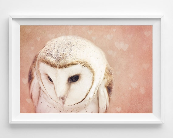 "Barn Owl Photograph Unframed / dreamy woodland creature love hearts / blush pink pastel girl nursery decor / photography print / ""Shy Love"""