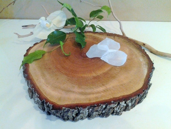 tree trunk slice wedding cake stand 12 rustic tree slice wedding cake stand wood tree 21259