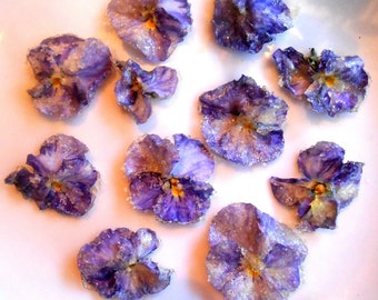 Organic Candied Flowers, Edible Violas, Cupcake Toppers, Wedding Cakes