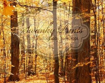 NEW ITEM 3ft x 4ft Fall Trees / Vinyl Photography Backdrop / Newborn photos