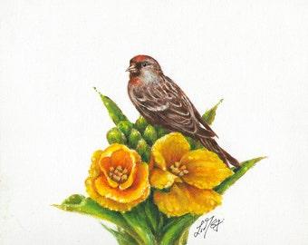 Original Oil BIRD Portrait Painting Art Artwork COMMON REDPOLL Daffodil Flower Artist Signed