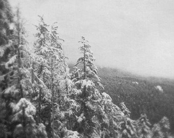 Mountain Photograph, Christmas Wall Decor, Forest Picture,  Ski Lodge Decor, Winter Photography,11x14 Black and White Art, Whistler Artwork
