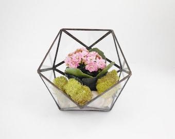 Glass Terrarium, clear glass planter, geometric planter, icosahedron.