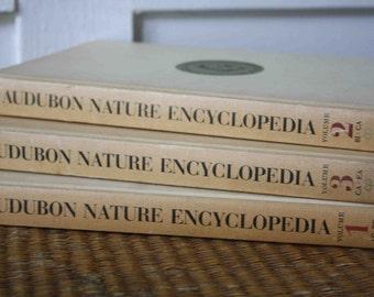 Vintage Audubon nature encyclopedias, set of three