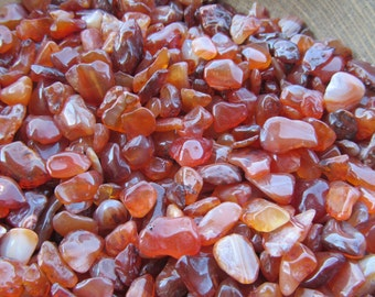 Mini Carnelian Chip Tumbled Stone Set of 5 Plus T46