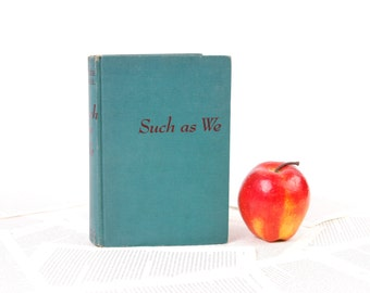 Kindle Cover or Nook Cover- Ereader Case made from a Book- Such as We