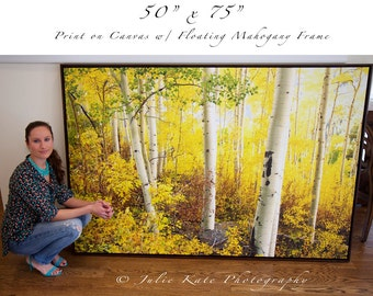 "50"" x 75"" Print On Canvas, Colorado Aspens, Fall, Landscape, Fine Art Print - ""Chasing The Colors of Fall"""