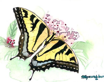 ACEO Limited Edition 1/25 - First butterfly of spring