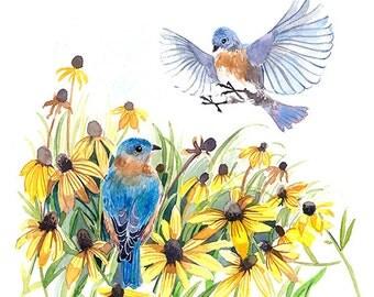 Art print - Bluebird in black-eyed Susans