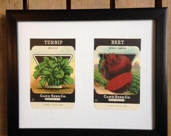 Framed vintage seed packets, seed companies, botanical art, vintage advertising, illustrative art, vintage artwork