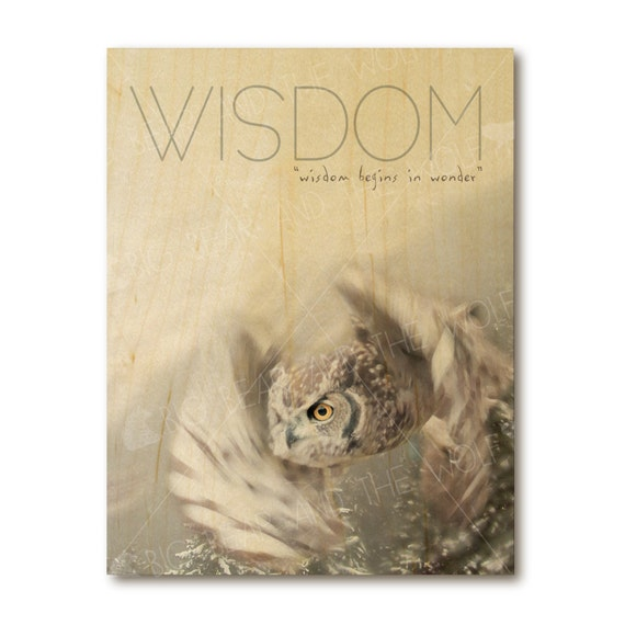 Wisdom owl art print on wood, inspirational quote, nature photography