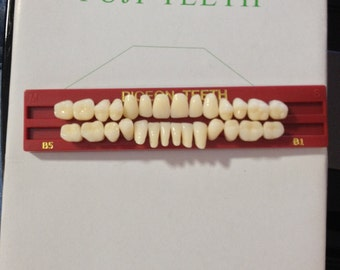 A full mouth set of Pidgeon Teeth (Child ot small adult size) TO1 B1