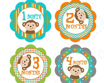 Neutral Monthly Baby Stickers, 1 to 12 Months, Monthly Bodysuit Stickers, Baby Age Stickers, Peekaboo Monkey 2