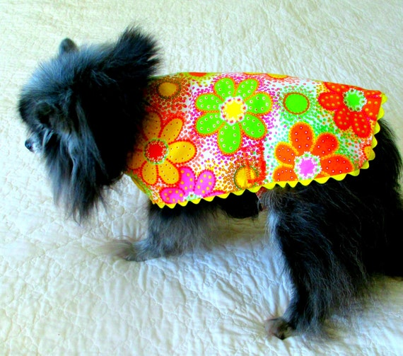 Small Dog Dress, Dog Dress, Dog Clothes Yorkie Shih Tzu, Custom to Fit, Cotton Multicolored Daisies