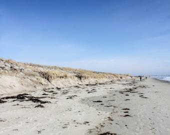 Beach On The Coast Of Maine Print