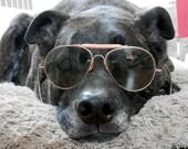 WWII Aviator Sunglasses by Sunmaster Military Pilot Sunglasses