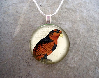 Parrot Jewelry - Glass Pendant Necklace - Victorian Bird 15