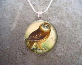 Owl Jewelry - Glass Pendant Necklace - Victorian Bird 42