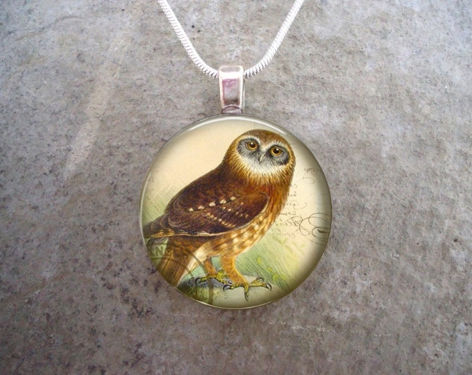 Owl Jewelry - Glass Pendant Necklace - Victorian Bird 42