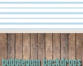 Baby Blue Stripes and Natural Hardwood - Vinyl Photography  Backdrop Photo Prop