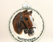 Horse Painting, Equestrian Art, Custom Pet Portrait, Hand Painted Horse, Christmas Ornament, Glass Ball, Pet Loss Memorial, Personalized Pet