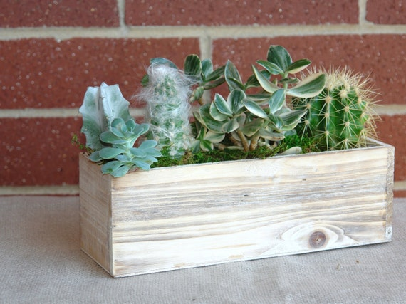 wedding table decor rectangular wood boxes planter cactuses succulents ...