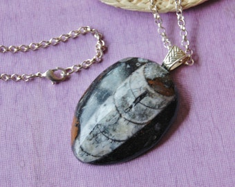 """Orthoceras Fossil Stone Pendant Necklace 24"""" Silver Tone Rolo Chain Lobster Claw Clasp"""