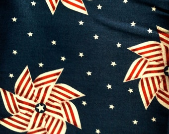 Patriotic Pinwheels Printed Pillow