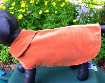 doggie cape in brown velveteen