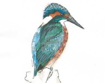 A5 King Fisher Illustration PRINT