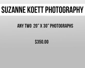 "Any Two 20"" x 30"" Photographs"