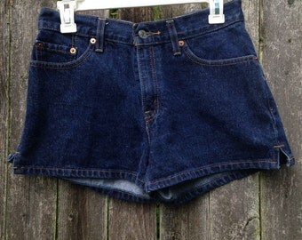 Vintage 90's Blue Wash High-Waisted Shorts // Size 7