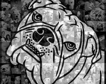 Custom Illustration Photo Mosaic Collage - English Bulldog - 20x20 Inch - Wall Art - Wall Decor