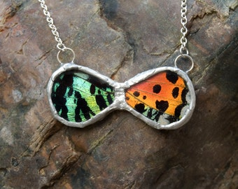 FREE SHIPPING  Real Sunset Moth Wings Encased in Hand Cut Glass and Soldered Infinity Pendant Necklace