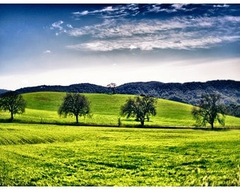 Travel Photography, Paso Robles, California Metallic Photographic Print